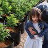 In this 2014 photo, Matt Figi hugs and tickles his once severely ill 7-year-old daughter, Charlotte, as they walk together inside a greenhouse for a special strain of medical cannabis known as Charlotte's Web, which was named after the girl early in her epilepsy treatment. (Brennan Linsley/AP)