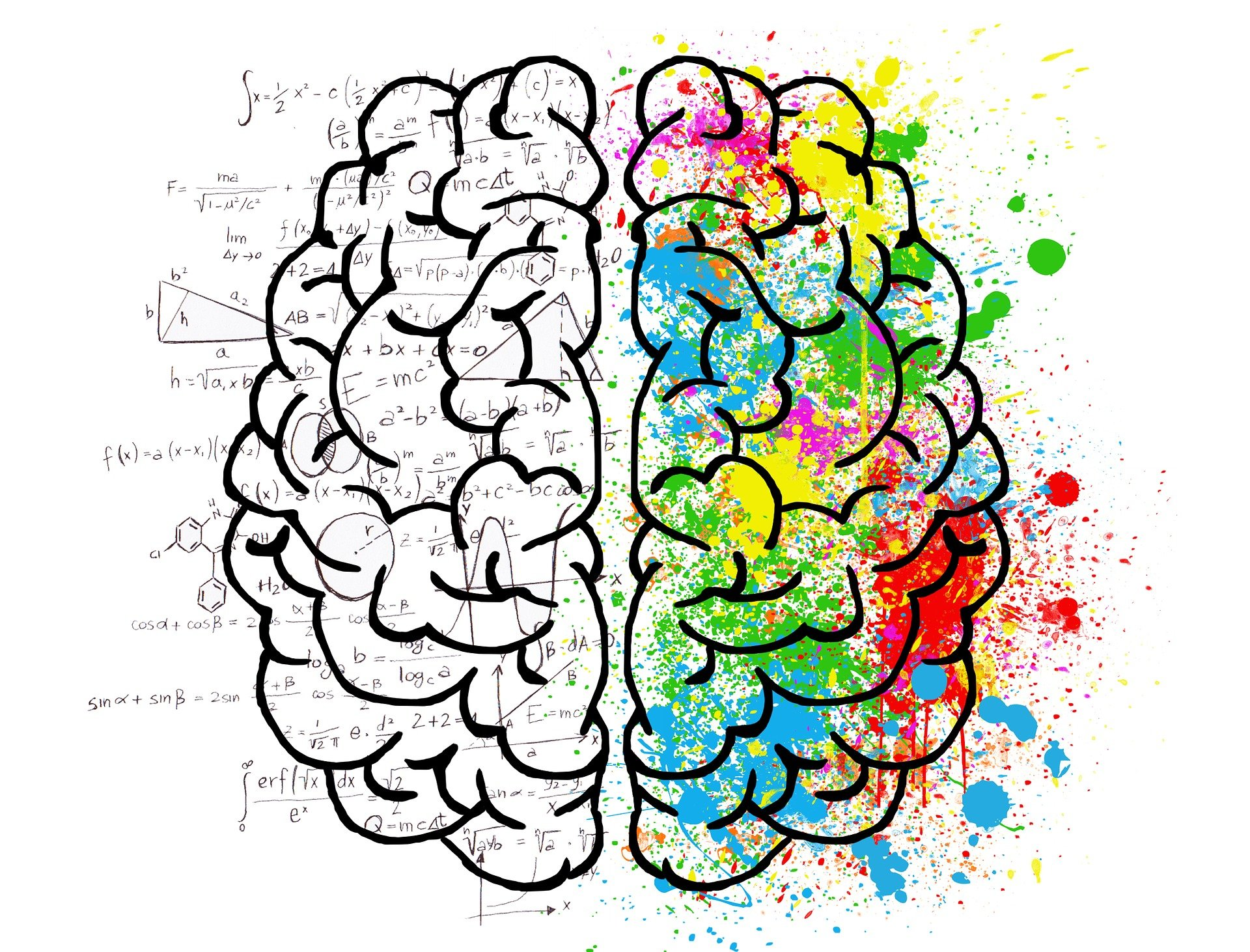 A drawing of the shape of a brain, illustrating bright, mixed colours of red, yellow, blue and green on one side