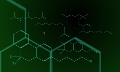 Cannabinoid molecules on a green and black background