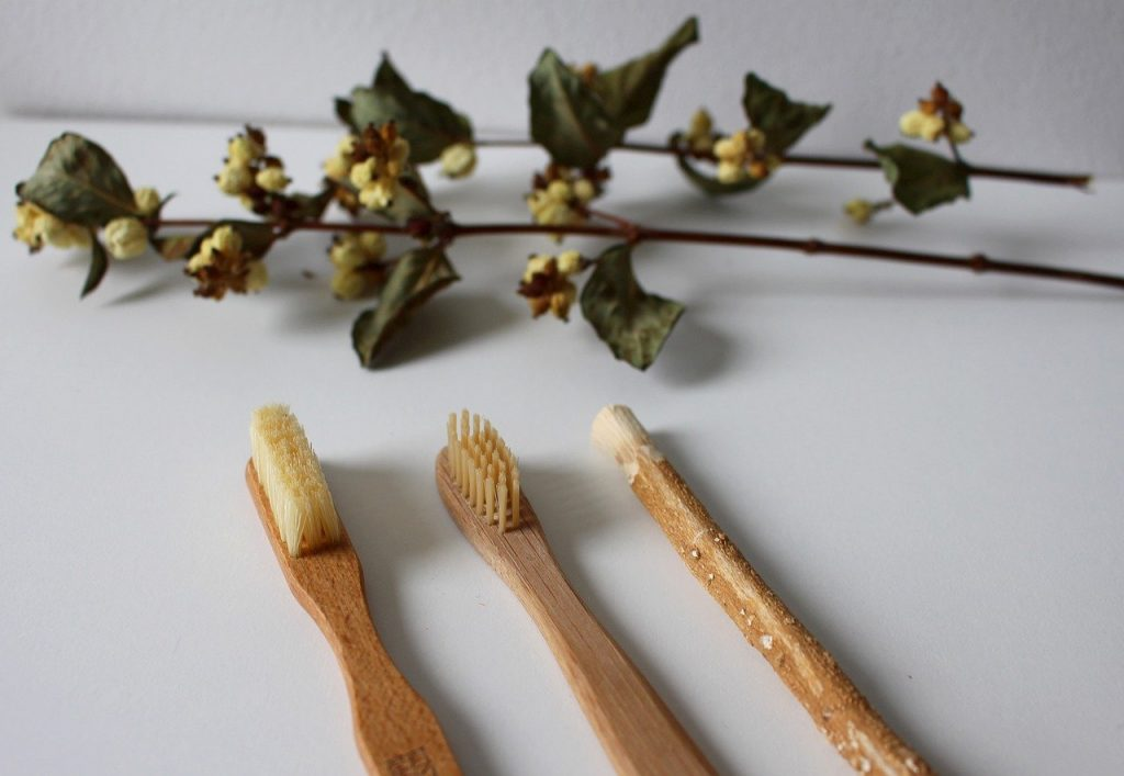 A row of wooden toothbrushes lie on a white background with a sprig of ivy in the background